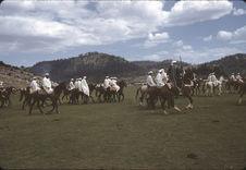 Cavaliers berbères