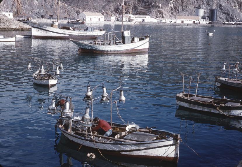 Barques à palangres