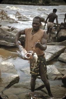 Bords du Congo