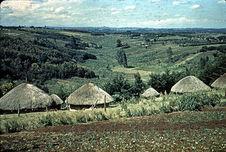 Réserve Kikuyu