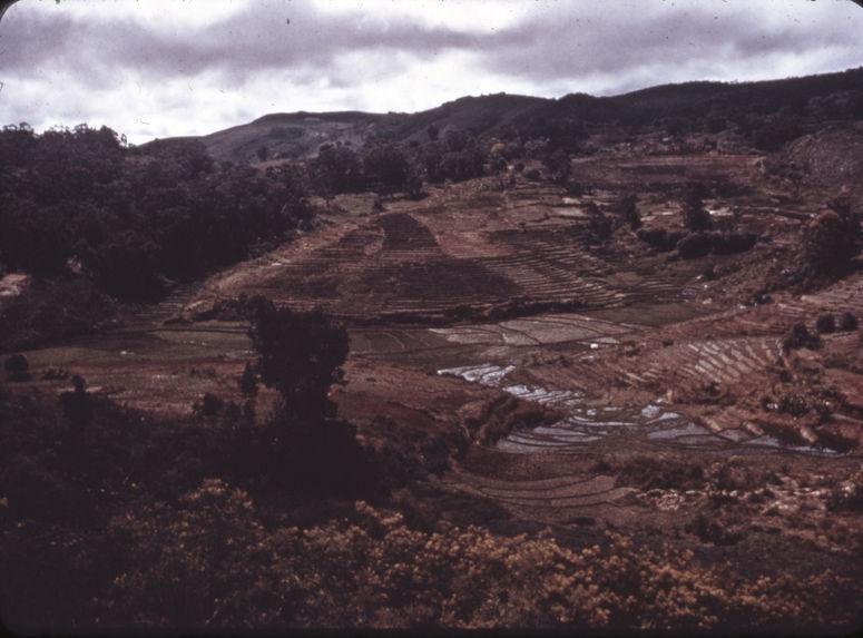 Madagascar [paysage]