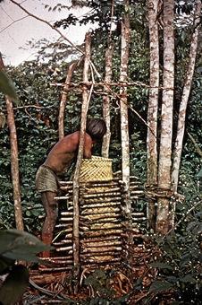 Presse pour le manioc