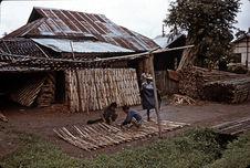 Confection des parois en bambous divisés pour maison