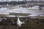 Rizières dans la plaine de Mandalay