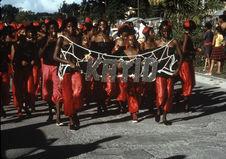 Groupe de quartier pour le carnaval