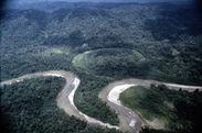 Rio Curaray