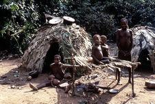 Pygmée [famille]