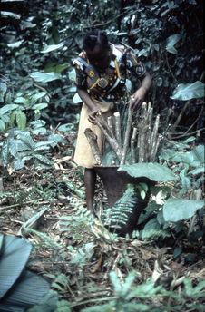 Jeune femme ramassant le bois pour cuisiner