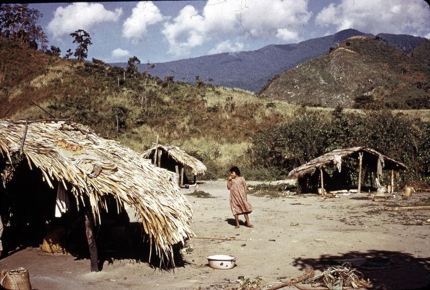 Village traditionnel Yukpa