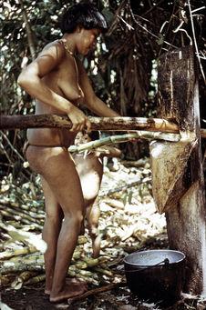 Femme extrayant du jus de canne à sucre