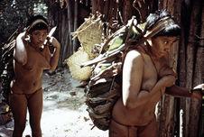 Femmes chargées de manioc