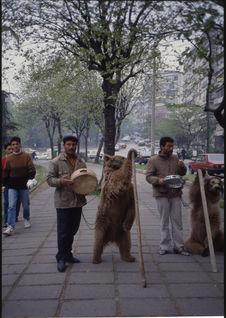 Ours dansant devant l'hôtel Mechka
