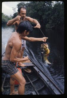 Pêche au Tucunaré