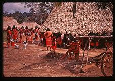 Femmes servant la bière de manioc