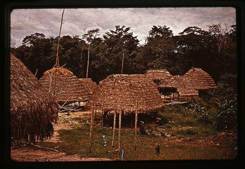 Village Wayana
