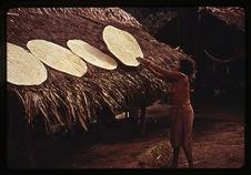 Séchage des galettes de manioc