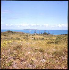 Sans titre [paysage de littoral et de pins]