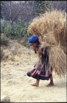 Vieille femme portant une lourde charge