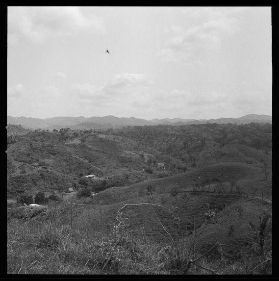 Paysage de Boca del Toro