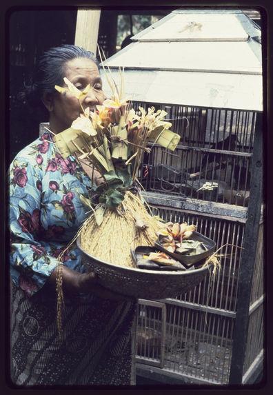 Une femme porte l'offrande qui est constituée de l'effigie et d'une botte de paddy