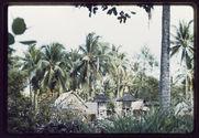 Vue générale du Pura Patal, entouré par la cocoteraie