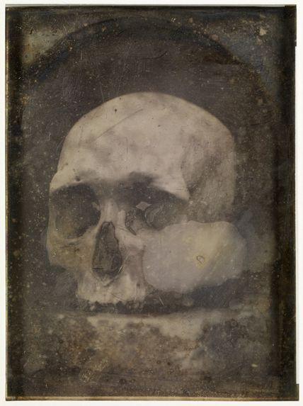 Crâne de type Guanche dominant