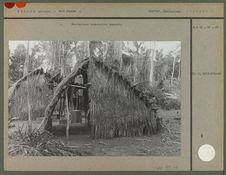 Habitations temporaires guarani