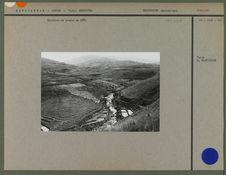 Rizières en gradin en 1901