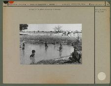Mare et pêche collective à Ramongo