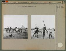 Le battage du mil entre Ouagadoudou et Po