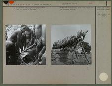 A Diarbakato, dépeçage d'un hippopotame