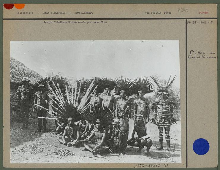 Groupe d'indiens Bororo ornés pour une fête