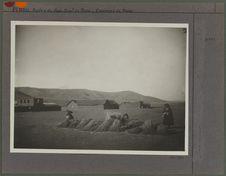 Indiennes vendant de la paille fraiche