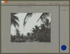 Village sous les cocotiers