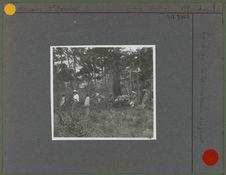 Caravane de la mission en forêt