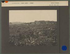 Chemin d'accès à la réserve forestière