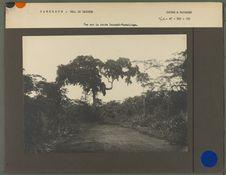 Vue sur la route Yaoundé-Akonolinga