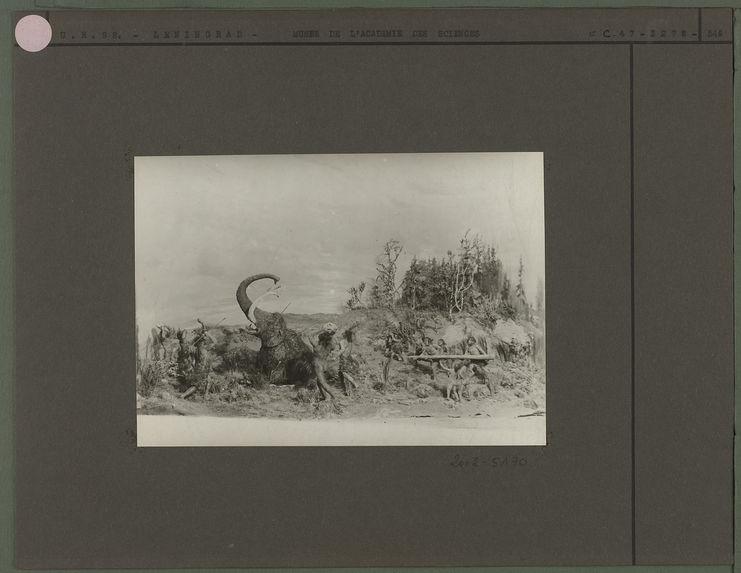 Reconstitution de la chasse au mamouth