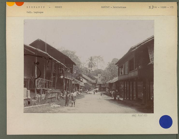 Rue et bungalow