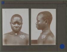 Homme Ba-Kongo, profil