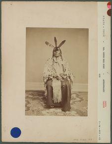Type d'indien Dakota Yankton