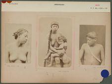 Types d'indigènes galibis