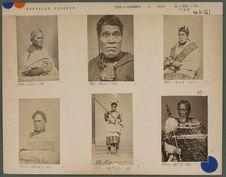 Types de chefs maoris