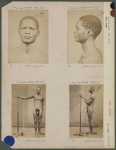 Umfundisi, Cafre de la tribu des Sandili's