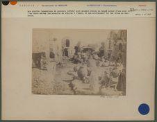 L'habitation Berbère en Tunisie