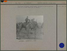 Harnachement de chameau