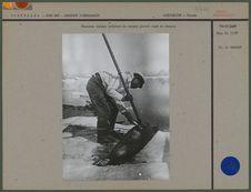 Chasseur eskimo