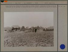 Habitations, population sédentaire Harantin et Merabtin, originaires du Touat et...