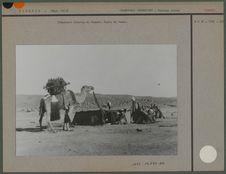 Campement touareg et chameau avec selle de femme