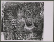 Quirigua. Stèle